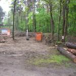 Unbebautes Gelände mit Baumstämmen
